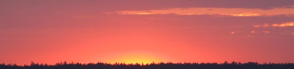 sunset crop horizontal
